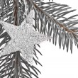 Christmas tree with star — Stock Photo #5295956