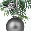 Christmas decoration — Stock Photo #5296491