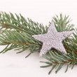Christmas tree with star - Foto de Stock  