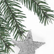 Decorated Christmas tree -  