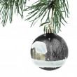 Christmas decoration — Stock Photo #5296967