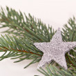 Christmas tree with star — Stock Photo #5297497
