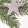 Christmas tree with star — Stock Photo #5298187