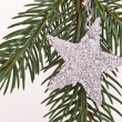 Christmas tree with star — Stock Photo #5298296