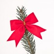 Decorated Christmas tree branch — Stock Photo