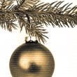 Christmas decoration — Stock Photo #5298565