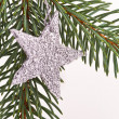 Christmas tree with star — Stock Photo #5298828
