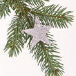 Christmas tree with star — Stock Photo
