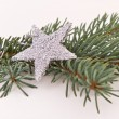 Christmas tree with star — Stock Photo #5299375