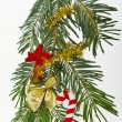 Christmas branch - Stock Photo