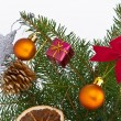 Christmas tree decorated — Stock Photo #5299579
