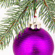 Christmas decoration — Stock Photo #5299602