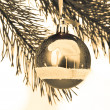 Christmas decoration — Stock Photo #5299613