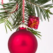 Christmas decoration — Stock Photo #5299703