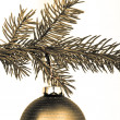 Christmas decoration — Stock Photo #5299805