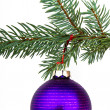 Christmas decoration — Stock Photo #5299896