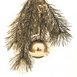 Christmas decoration — Stock Photo #5299924