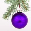 Christmas decoration — Stock Photo #5299950