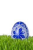 Easter egg in grass — Stock Photo