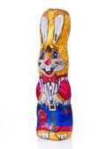 复活节兔子 — 图库照片