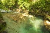 スロベニアの山脈滝 — ストック写真