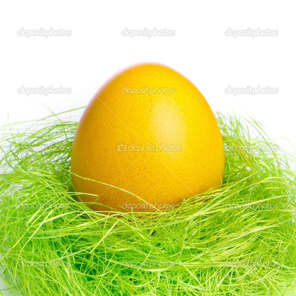 Painted easter egg in a nest — Stock Photo #5293742