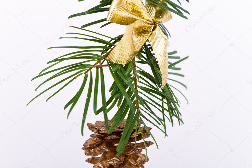 Decoration on Christmas tree isolated — Stock Photo #5296313