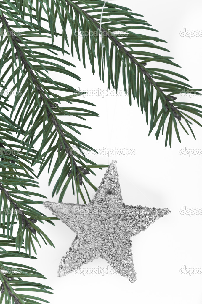 Decoration on Christmas tree isolated — Stock Photo #5296872