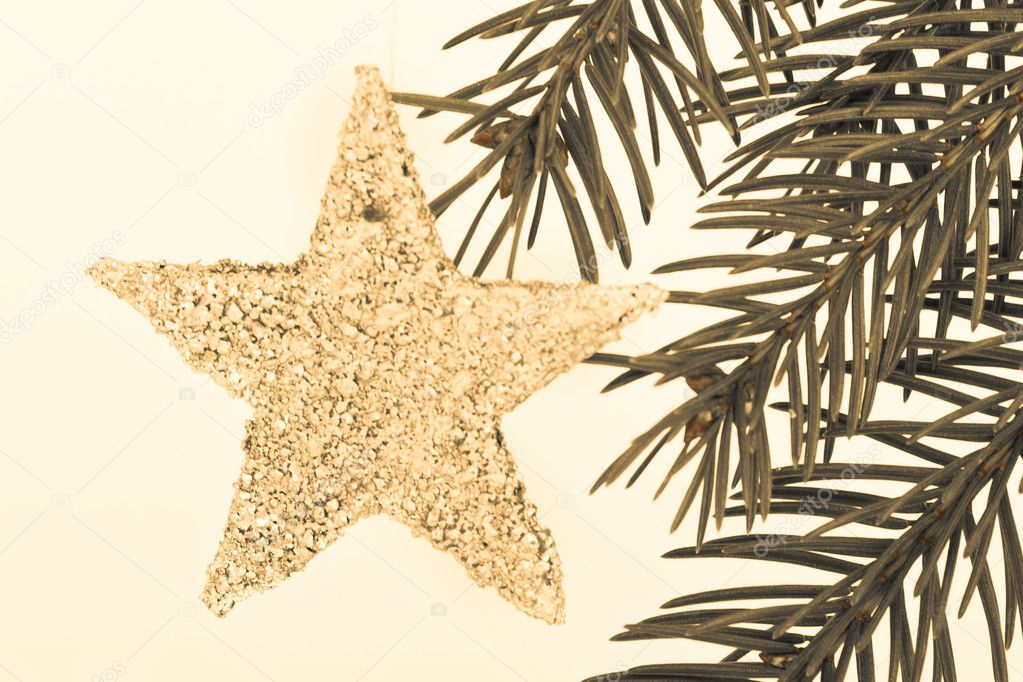 Decoration on Christmas tree isolated — Stock Photo #5298165