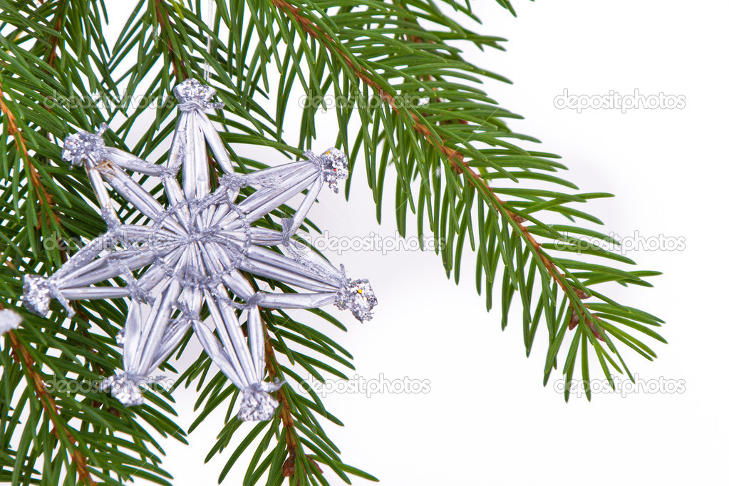 Decoration on Christmas tree isolated — Stock Photo #5299061