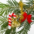 Christmas branch - Stockfoto
