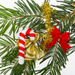 Christmas branch - Foto de Stock