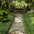 Balinese botanical garden — Stock Photo
