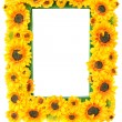Stock Photo: Photo Frame with Sunflowers