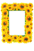 Photo Frame with Sunflowers — Stock Photo