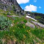 Beautiful Norway nature — Stock Photo #4282789