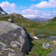 Beautiful Norway nature — Stock Photo #5052279