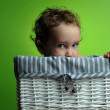 Baby sitting in a basket - Stock Photo