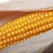An ear of ripe corn - Stock Photo