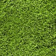 Stock Photo: Grass seamless pattern
