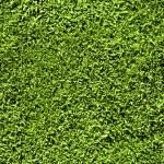 Grass seamless pattern — Stock Photo