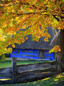 Autumn in Pirogovo — Stock Photo