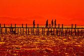 Puesta de sol en las orillas del mar rojo — Foto de Stock