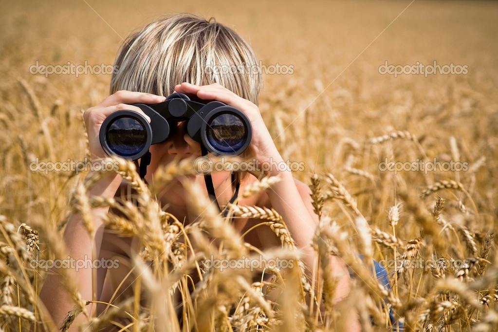 Boy, watching nature, in a golden field of wheat — Stock Photo #4659312