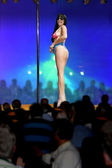 Pole dancer 5 — Stock Photo