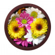 Bowl of flowers — Stock Photo #4970315