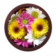 Bowl of flowers — Stock Photo