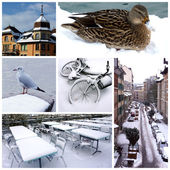 Geneva by winter, Switzerland, collage — Stock Photo