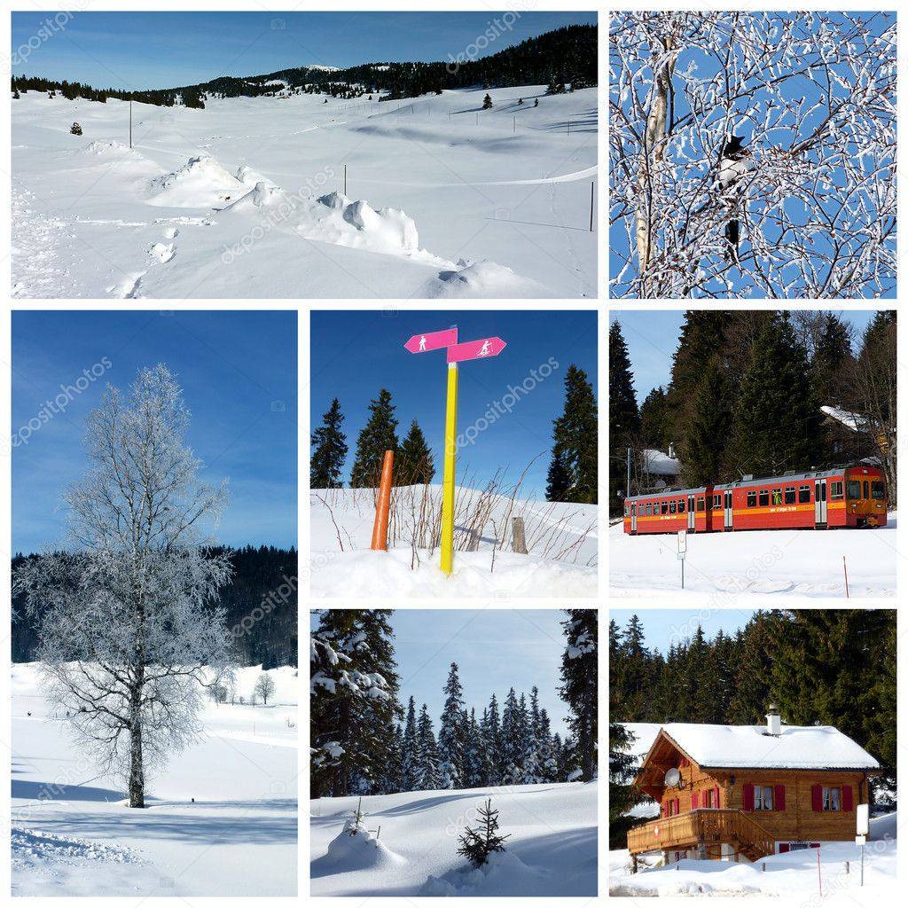Winter Jura mountain, Switzerland, collage with a wood chalet, a little red train, trees, bird and tir trees — Stock Photo #4000515