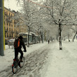 Royalty-Free Stock Photo: City biker in the snow